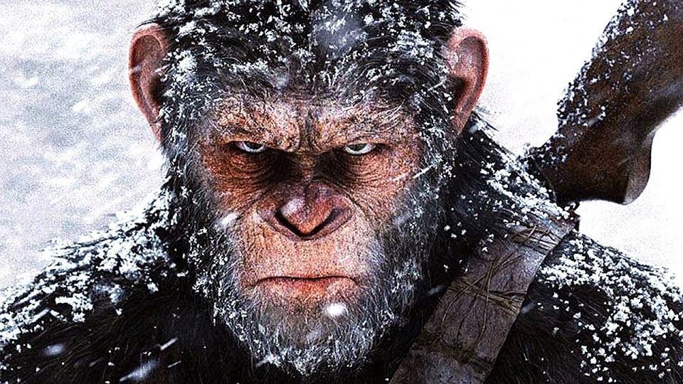 """Człowiek — takie zwierzę, tylko bardziej. Recenzja """"Trzeciego szympansa""""."""